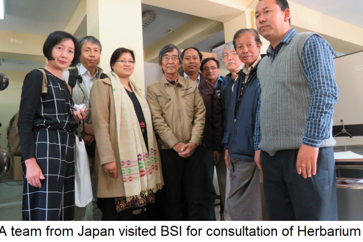 A team from Japan visited BSI for consultation of Herbarium