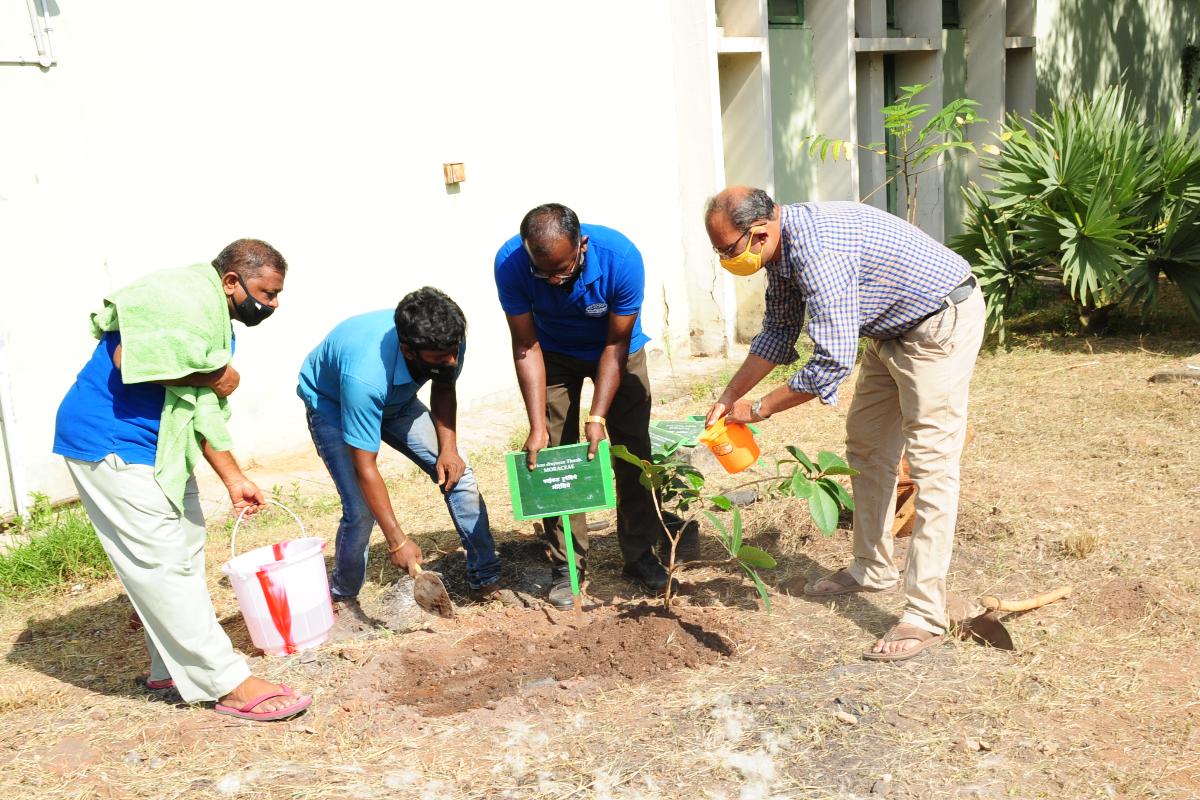 8. Van Mahotsav celebration at BSI SRC on 06-07-2021-6 Planting
