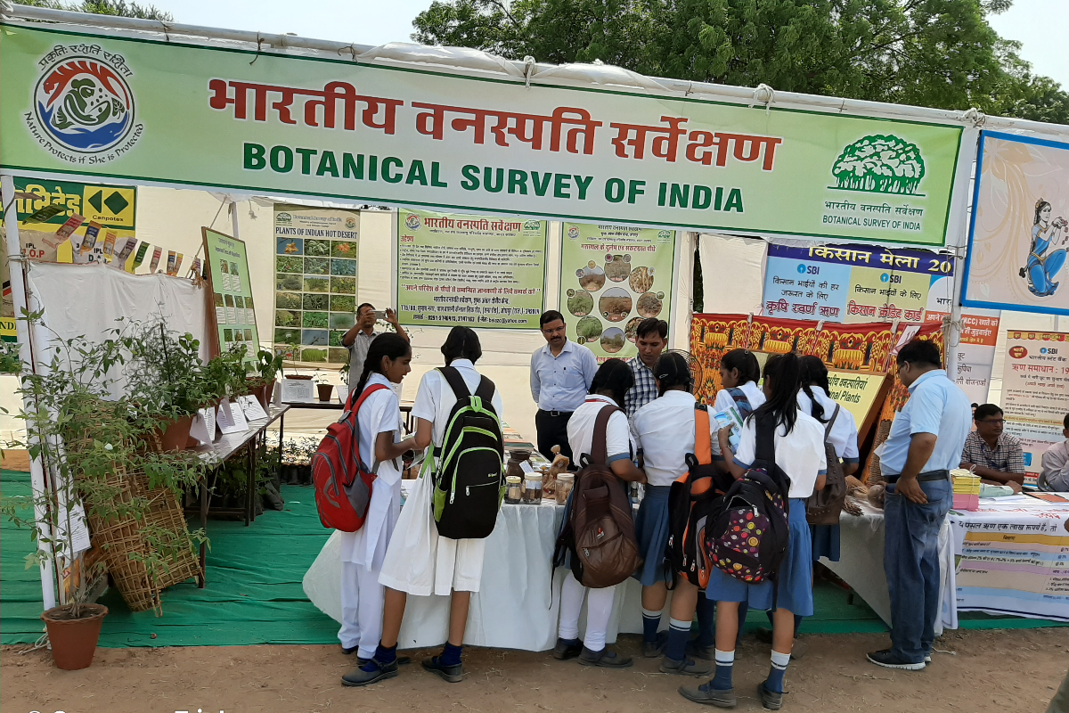 visit of students in the stall