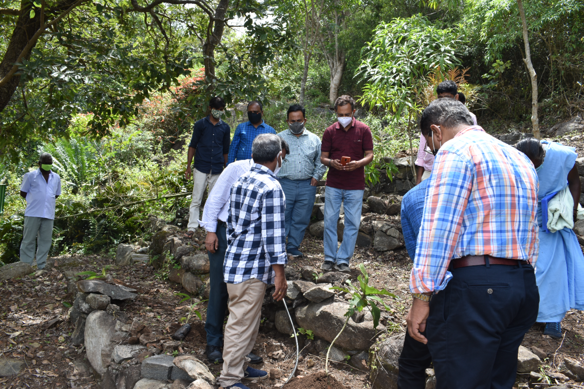 Planting of saplings by staff members of NOEG and HRS, Yercaud.