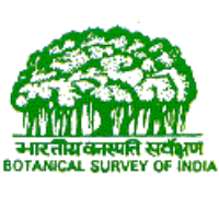 Botanical Survey of India